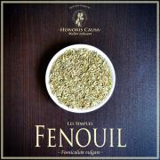 """FENOUIL """"Foeniculum vulgare"""""""
