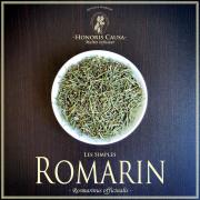 Romarin biologique, rosmarinus officinalis
