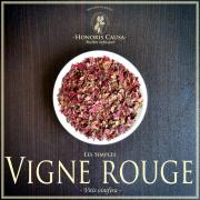 Vigne rouge biologique, Vitis vinifera
