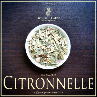 """CITRONNELLE """"Cymbopogon citratus"""""""