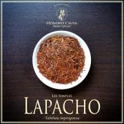 Lapacho, Tabebuia impetiginosa