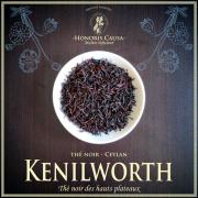 Ceylan Kenilworth thé noir