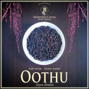 Tamil nadu, Oothu OP thé noir bio