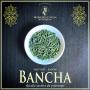 Bancha thé vert bio