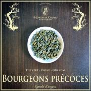 Bourgeons précoces du printemps, thé vert