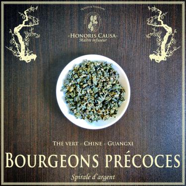 Bourgeons précoces du printemps thé vert