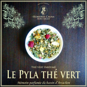 Le Pyla thé vert bio