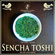Sencha toshi, thé vert Japon bio