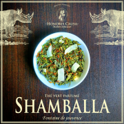 Shamballa, thé vert