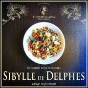 Sibylle de Delphes, infusion bio