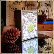 Sencha nébari, thé vert bio sachets individuels