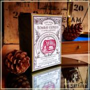 Bombay-express, thé noir bio sachets individuels