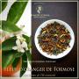 Fleurs d'oranger Oolong de Formose, thé bleu