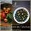 Abricot roux de Toscane, thé noir parfumé