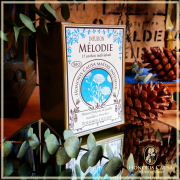Mélodie infusion bio sachets individuels
