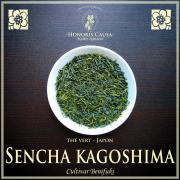 Sencha Kagoshima, thé vert Japon bio