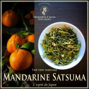 Mandarine satsuma du Japon, thé vert biologique