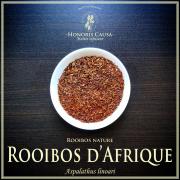 """Rooibos """"Aspalathus Linoari"""" biologique"""