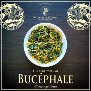 Bucéphale thé vert bio