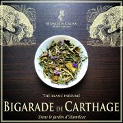 Bigarade de Carthage, thé blanc bio