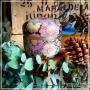 Boîte jardin de l'Est, 50 gr rose trêmière